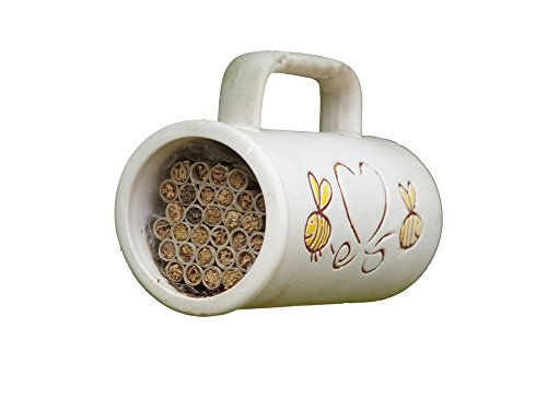 Wildlife World Nid pour abeille solitaire en forme de tasse