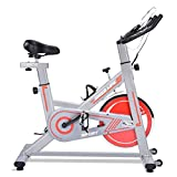 Best Fitness Spin Bikes - iDeer Life Exercise Bike, Indoor Cycling Bike, Smooth Review