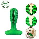 Iris Sprite Brosse à Dents Chien bâton Dents Nettoyage Jouet Soins des Dents Caoutchouc résistant à la Morsure Jouets à mâcher (Large, Green)...