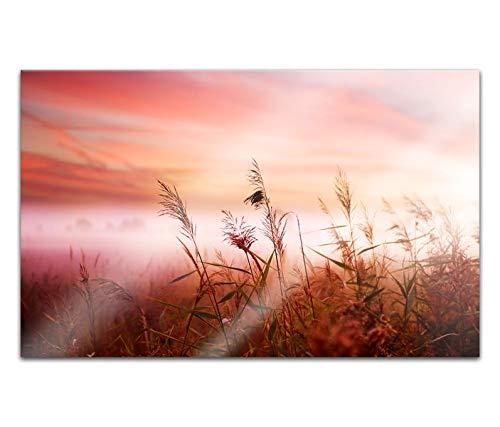 Acrylglasbilder 80x50cm Natur Landschaft Sonnenuntergang Gras Acryl Bilder Acrylbild Acrylglas Wand Bild 14H620