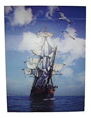 Galleon Sailing Ship and Seagulls 3D Picture