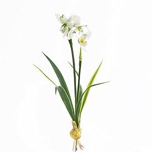 artplants.de Campanilla con Cebolla, Blanco, 25cm – Planta Artificial – Flores Decorativas