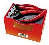 Minipflanzset Chili