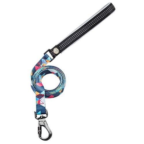 Pro-PET Super kostengünstige Nylon Hundehalsband und Hundeleine Set Hundeleine Halsband for Chihuahua Mops Bulldog Arnes Perro Reisen Walking Zubehör (Color : F, Size : L)