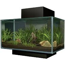 Suchergebnis Auf Amazonde Fr Aquariumtisch