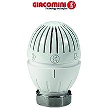 5er-Set Giacomini R470 Ventile f/ür Heizk/örper