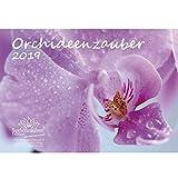 Orchideenzauber · DIN A4 · Premium Kalender 2019 · Orchidee · Phalaenopsis · Blume · Schmetterling · Natur · Garten · Blüte · Botanik · Set mit 1 Grußkarte und 1 Weihnachtskarte · Edition Seelenzauber