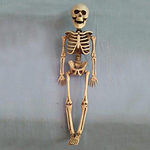 JINM Halloween Skelett, Kunststoff lebensechte Menschliches Skelett Skull Figur für Halloween Bar Dekoration Requisiten, Full Body Halloween Skelett mit beweglichen 40cmx10cmx6cm