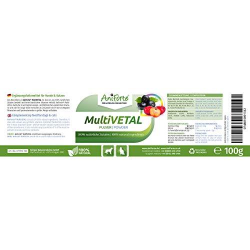AniForte Natürliches Multivitamin 100g – Naturprodukt für Hunde und Katzen - 3