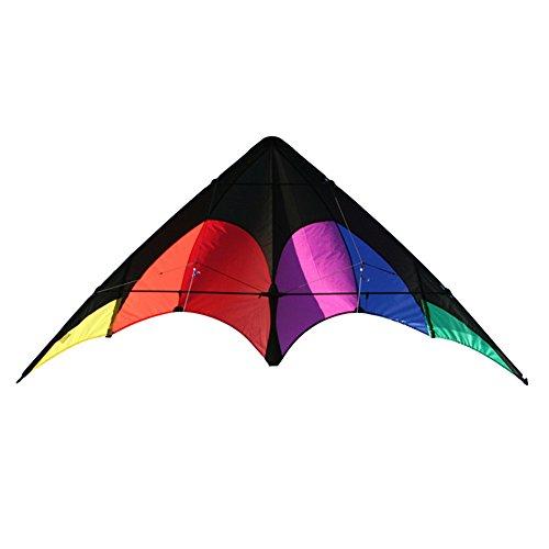 Elliot Delta Sport, Zweileiner Lenkdrachen für Einsteiger, ready to fly, schwarz-rainbow