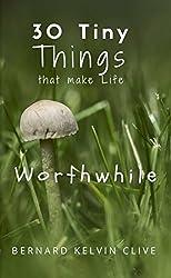 30 Tiny Things  That Make Life Worthwhile (English Edition)