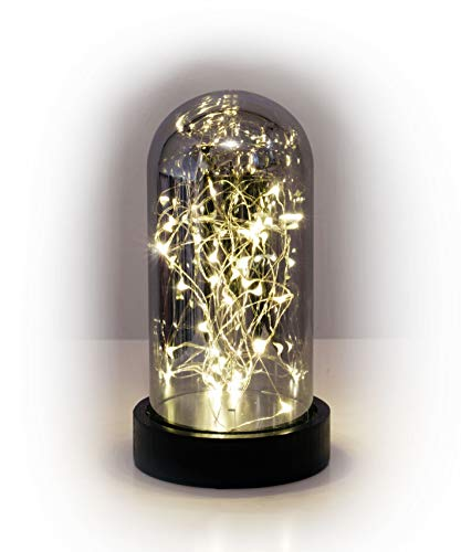 Micro Lichterkette in Glasglocke 30 LED - Draht Lichterkette im Glas - warmweiß