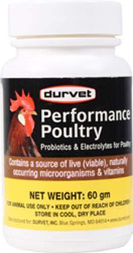Durvet INC D 698904 Probiotisches Geflügel, 100 g