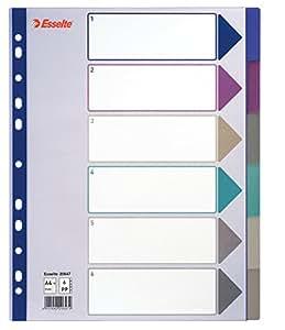 Esselte Intercalaires, 6 Onglets, A4, Plastique Résistant, Multicolore, 20647