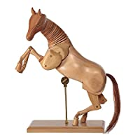 Horse Drawing - Figure - 30 cm Wooden Model for Drawing Room Fine art