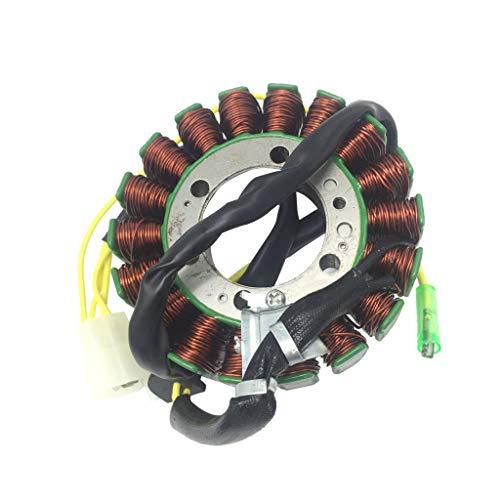 FLAMEER Magnetos Generator Motor Laden 4-Takt-Magnetgenerator für 250ccm 300ccm 4-Takt ATV Quad