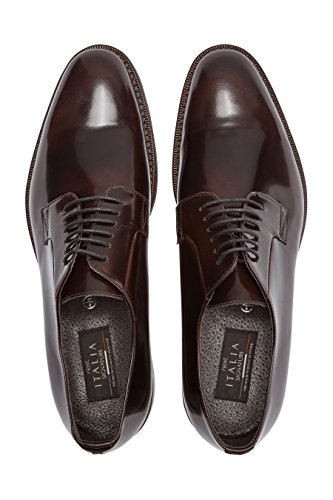 next Uomo Scarpe Signature Derby Lucide Vestibilità Regular Marrone