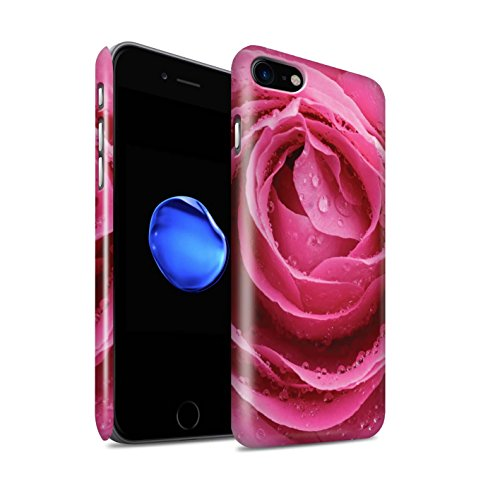 STUFF4 Glanz Snap-On Hülle / Case für Apple iPhone 8 / Sonnenuntergang Muster / Englische Gärten Kollektion Pinke Rose