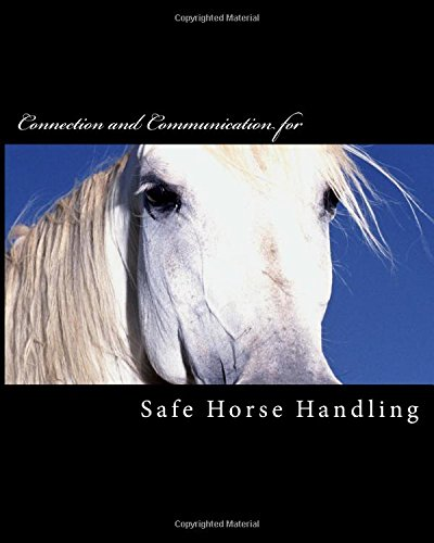 safe-horse-handling-brown-pony-series