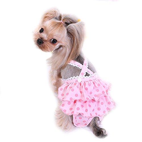 Baumwolle weiblich Sanitär Pet Hund physiologischen Hose Panty Hose kurz Kleiner Hund Pet Cat Tutu Rock Kleid Dog Unterwäsche Windel Overalls (Hund Sanitär-kleider)