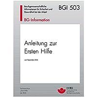 Holthaus Medical Broschüre -Anleitung zur Ersten Hilfe bei Unfällen- nach BGI 503, für Betriebe preisvergleich bei billige-tabletten.eu