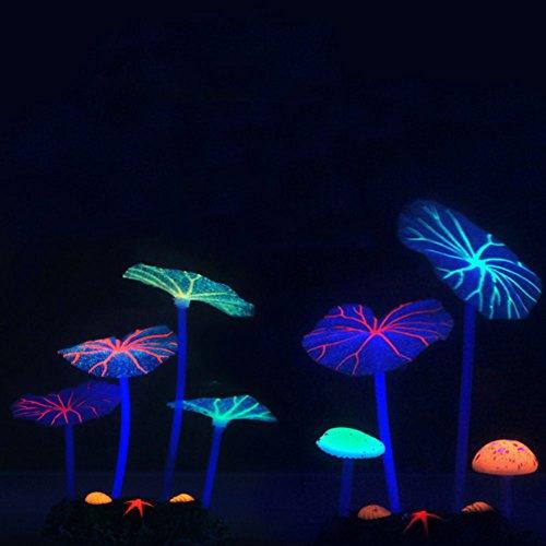 (2Stück) omem Künstliche Lotus Blätter & Pilze für Fish Tank Glowing Coral Periphere Wasser Pflanze Aquarium Ornament (Coral Reef Duschvorhang)