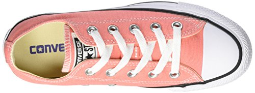 sunblush Star Adulte Rosa All Mixte Bassi Chuck Taylor Converse 8qZEP4w