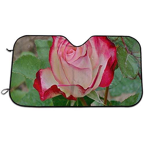 Fantástica Rosa Parabrisas Parasol Coche Ventana