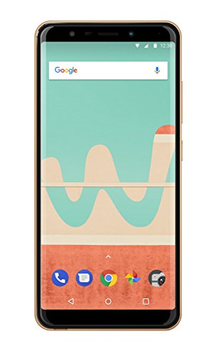 Wiko View Go Smartphone (14,5 cm (5,7 Zoll) Display, 16GB interner Speicher, Android 8.1 Oreo) gold