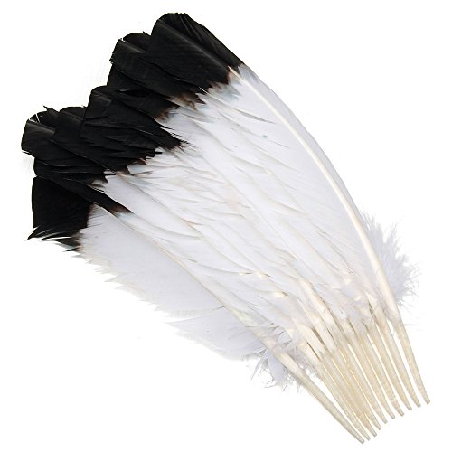 FunnyToday3655030,5-40,6cm 30-40cm Lang gefärbt Türkei Wing einsehbar Feder Schwarz Trinkgeld Nachahmung Eagle Federn für Showgirl Kostüm