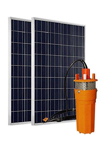 DCHOUSE 24 Volts Système de l'eau d'alimentation solaire : Lot de 2 100 W polycristallin Panneau solaire PV + 1 24 V inoxydable Passoire submersible solaire Pompe à eau