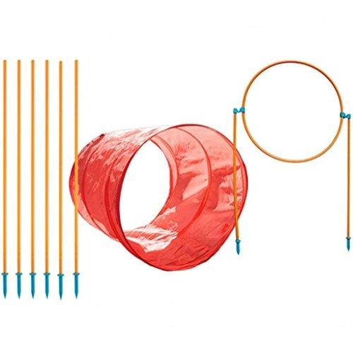 Kyjen 42003 Outward Hound Zip and Zoom Outdoor Agility Kit 3 für Hunde mit Hundetunnel, Hindernisstange, Hochsprung Hindernisse, Größe L, mehrfarbig (Hunde-agility-kit)