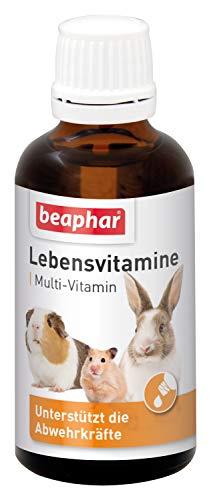 beaphar Lebensvitamine für Nager | Vitamintropfen für Kleintiere | Mit B Vitaminen, Vitamin C, E und K | Besonders gut für Meerschweinchen | 50 ml -