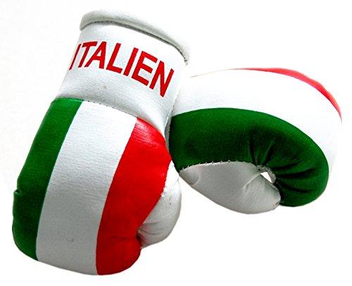 Preisvergleich Produktbild Mini Boxhandschuhe - Italien