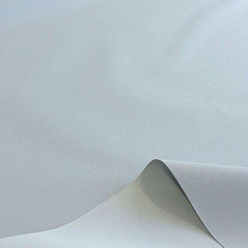 TOLKO Sonnenschutz Planen- und Sonnensegel-Stoff Meterware - Oeko-TEX® Qualität mit UV-Schutz 80+ - Wasserdicht, Wetterbeständig und Lichtecht - 170 cm breit (Hell Grau)