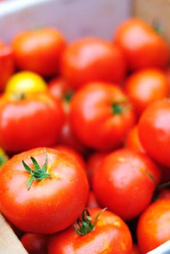 Tomate Matina (Lycopersicum L.) 25 Samen Reinsaat