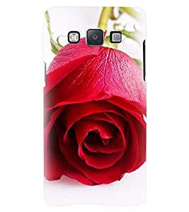 Printvisa Premium Back Cover Blooming Red Rose Pic Design for Samsung Galaxy A5::Samsung Galaxy A5 A500F