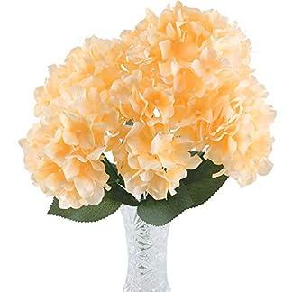 HUAESIN FloresArtificialesDecoraciónJarrones RamodeFlores HortensiaArtificial 6 Cabezas RamodeBoda Exterior y Interior para Fiesta Cumpleaños Aniversario Hogar Color Champagne