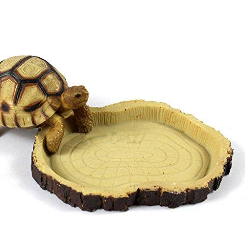 Non-brand Flach Trinkschale Futternapf Wassernapf Für Schildkröte Schlangen Reptil (Für Zubehör Schildkröten)