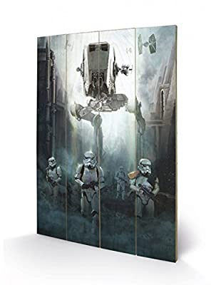 Star Wars Art Sur Bois - Rogue One, Stormtroopers (60 x 40 cm)