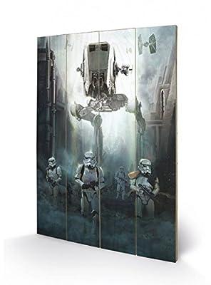 Star Wars Art Sur Bois - Rogue One, Stormtroopers (60 x 40 cm)