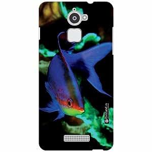 Coolpad Note 3 Lite Back Cover ( Designer Printed Hard Case)