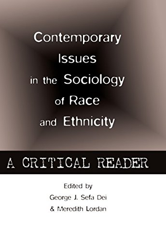 Contemporary Issues in the Sociology of Race and Ethnicity: A Critical Reader (Counterpoints / Studies in Criticality, Band 445)