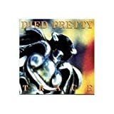 Songtexte von Died Pretty - Trace