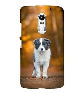 FUSON Puppy Love Dog 3D Hard Polycarbonate Designer Back Case Cover for Lenovo Vibe X3