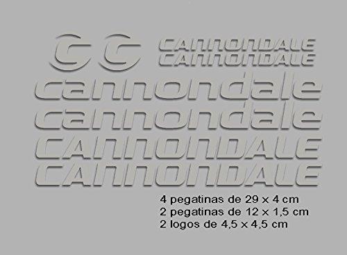 Ecoshirt 0P-98SX-BOXN Aufkleber-Cannondale F117 Vinyl Adesivi Decal Aufkleber 2/3/6 MTB Stickers Bike, Silber -