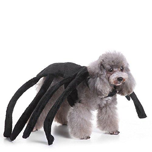 Labellevie Hundekostüm Spinne Kleidung Hund Kostüm für Party Halloween Weihnachten