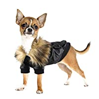 Namsan Dog Winter Jacket - Puppy Coat Leather Motorcycle Dog Jacket Waterproof Cat Coat for Small Dogs, Black M