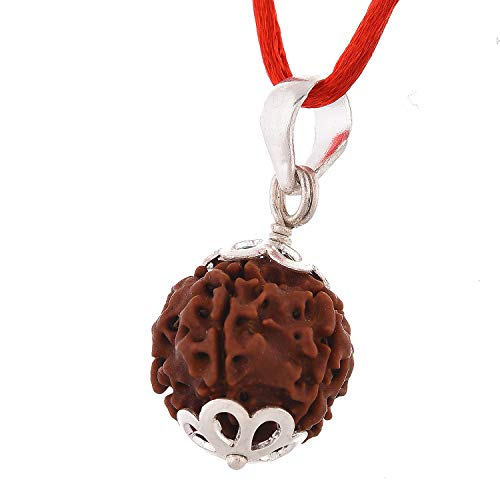 SSG Collections Lab Certified 7 Mukhi Rudraksha Pendant, Nepali Excellent Quality Rudrakash (Large Size: 18-22mm)