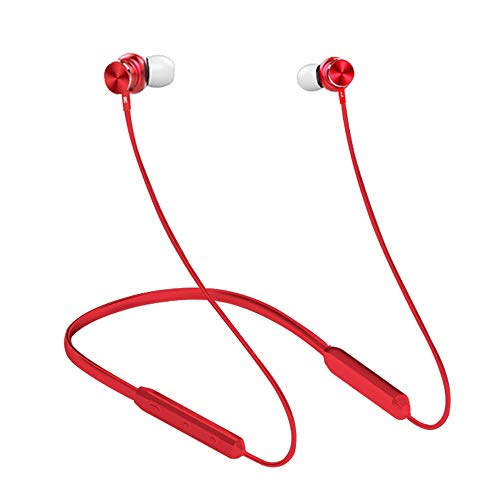 DANGSHUO - Auriculares inalámbricos Bluetooth 5.0 de 8 a 10 Horas con cancelación de Ruido